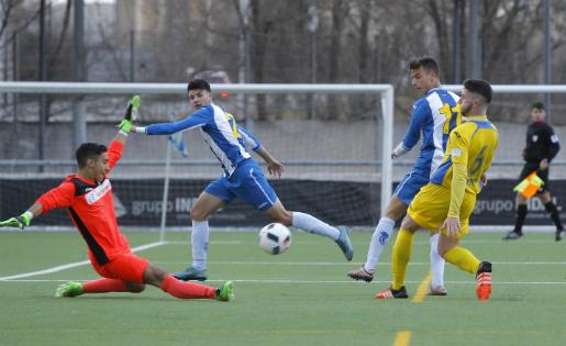 L'Espanyol ha acabat la Lliga a casa golejant el Manacor// FOTO: RCDESPANYOL