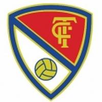Escut - Terrassa FC